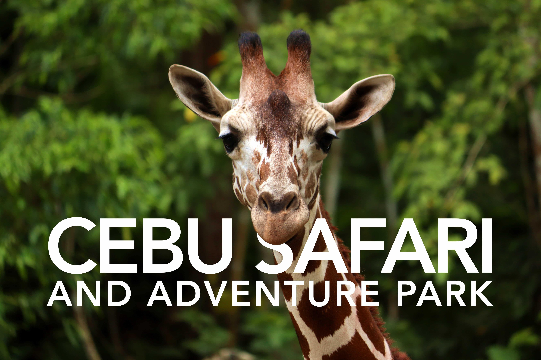 FIRST LOOK | Cebu Safari & Adventure Park – the ...